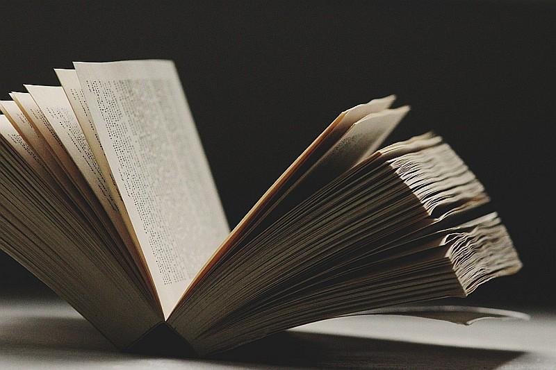 «Ο κόσμος του βιβλίου συνεχίζει να μάχεται μόνος»