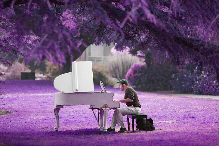 Μαθήματα πιάνου έναντι κηπουρικής εργασίας (διήγημα)