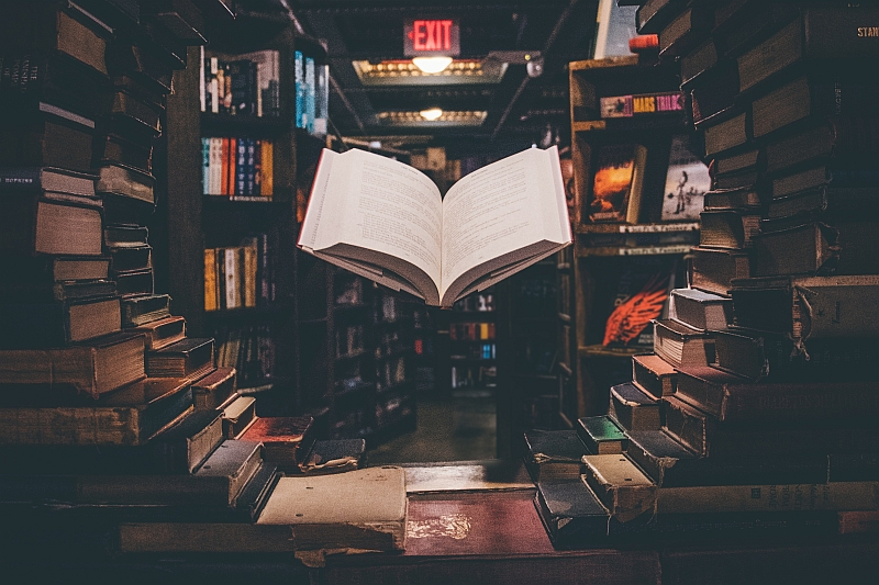30+1 βιβλία Ιστορίας, ιδεών και φιλοσοφικού στοχασμού