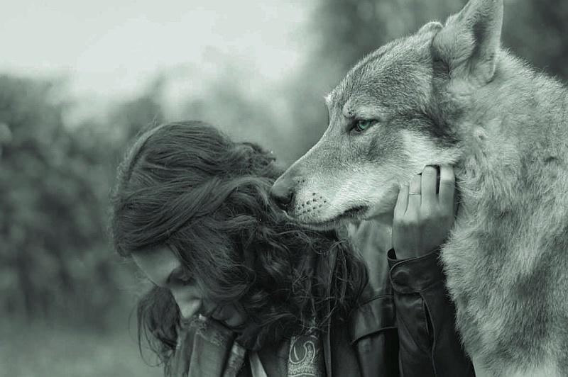 Γυναίκες που τρέχουν με τους λύκους: σκέψεις και αφηγήσεις για την τετράποδη σκιά μας