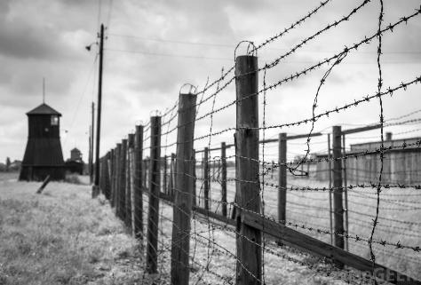 wire fence near guard tower