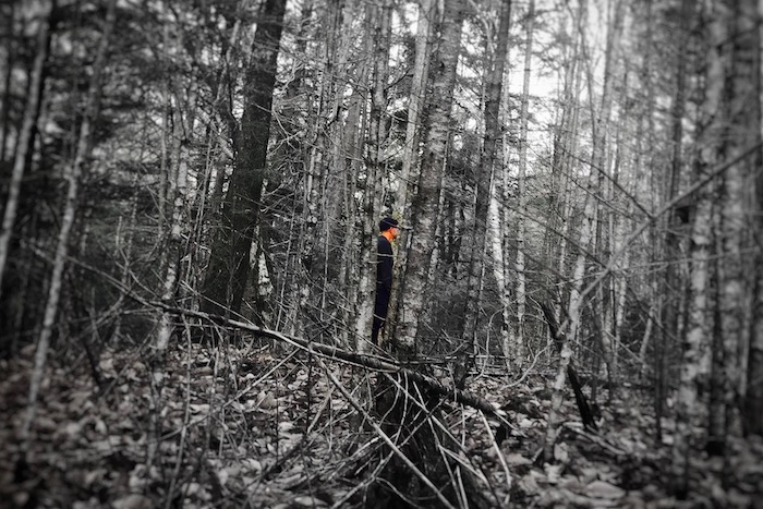 Τρόμος και αγωνία στο δάσος