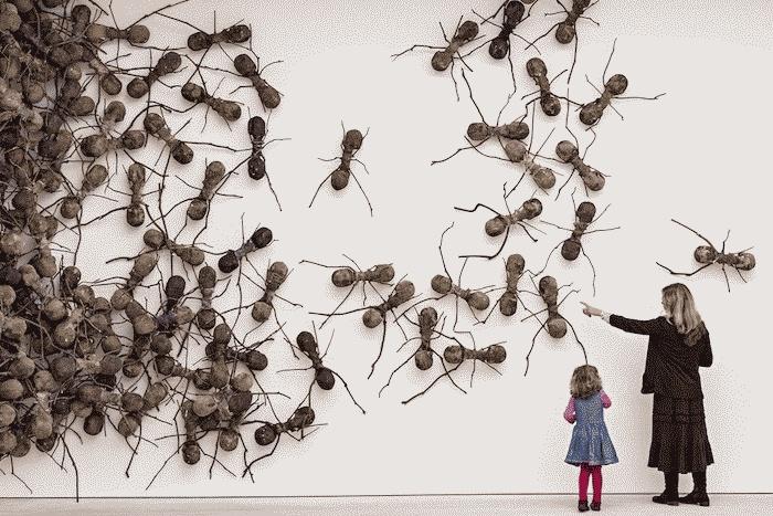 Έντομα και άνθρωποι υπό το φως των λέξεων