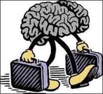 brain-drain-auto