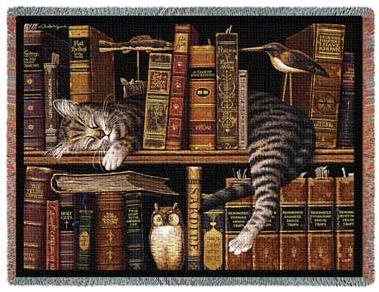 cat-sleeping-bookshelf